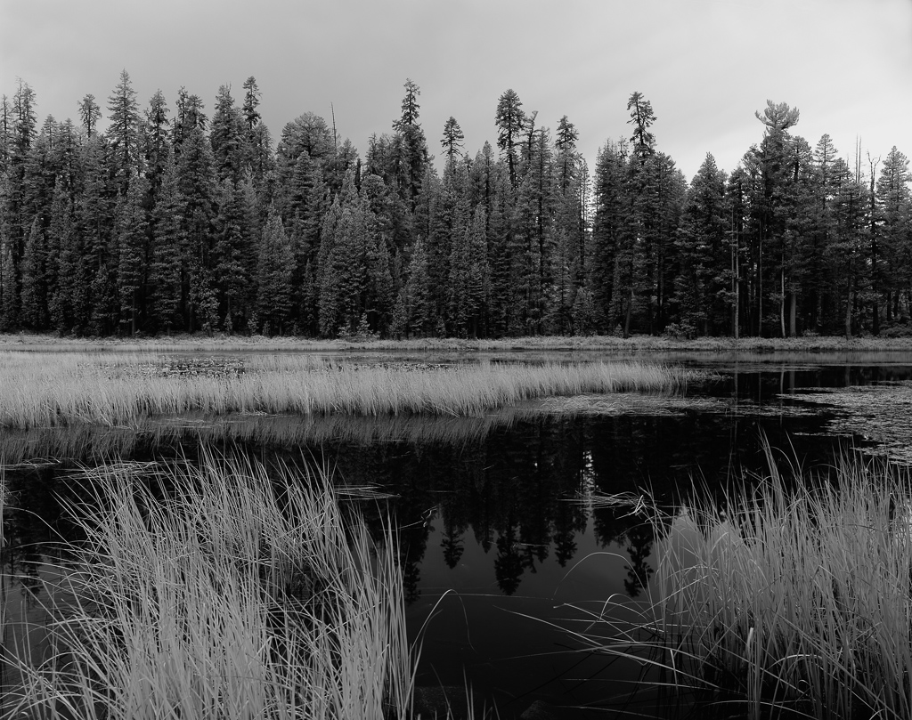150929_Yosemite-Siesta-Lake_1024.jpg
